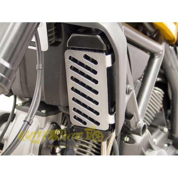 Copri radiatore olio inox Ducati Scrambler 800 dal 2016
